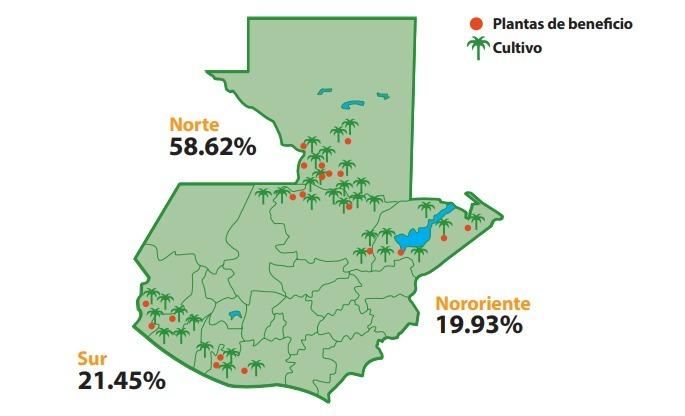 Mapa-de-Guatemala-siembra-de-palma-1